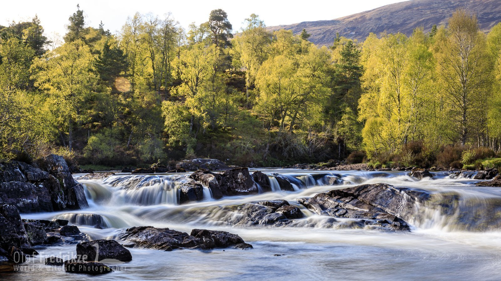Glen Affric, Schotland 1